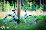 JONEDO_SummerJudoRocks_2013_28