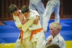 JONEDO_SummerJudoRocks_2014_51