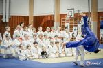 JONEDO_SummerJudoRocks_2015_66