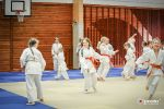 JONEDO_SummerJudoRocks_2015_73
