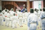 JONEDO_SummerJudoRocks_2015_75
