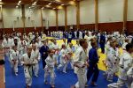 JONEDO_SummerJudoRocks_2017_45