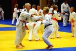 JONEDO_SummerJudoRocks_2017_66