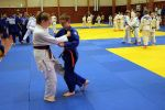 JONEDO_SummerJudoRocks_2017_92