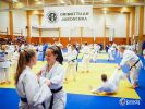 JONEDO_SummerJudoRocks_2016_15