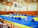 JONEDO_SummerJudoRocks_2016_21